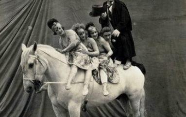 Цирк, да и только!
