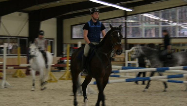 Петровские лошадки