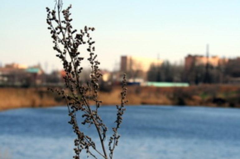 Самая лучшая окраина города – Донской/Цветочный