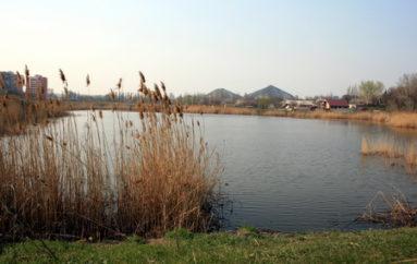 Самым зеленым районом города здесь считают Буденновский