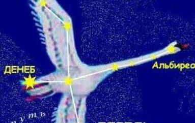 Звезда в созвездии Лебедя
