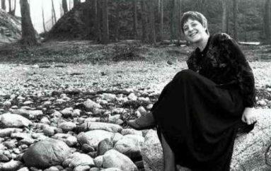 Меркель в Донецке: то ли девушка, то ли виденье