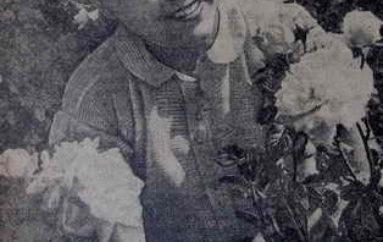 Английская роза Донецка