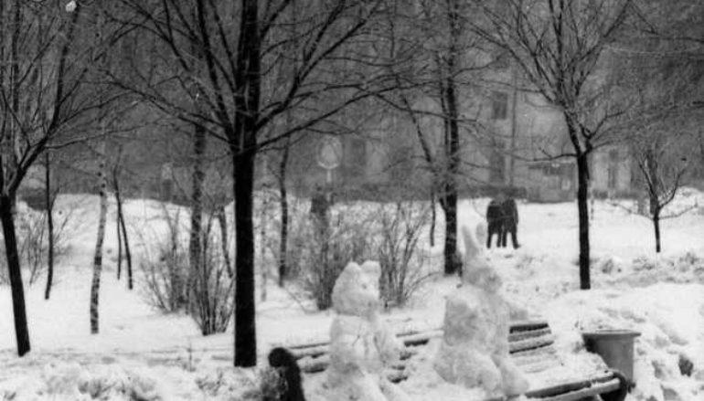 Снимал Череватенко-5. Зимний день