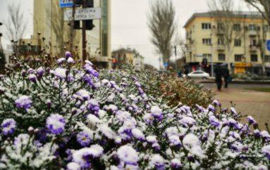 Первый снег сезона