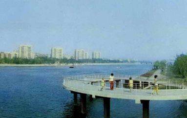 «Вишневая косточка»: Донецк-1973