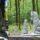 «Поляна сказок» с элементами фотоэволюции