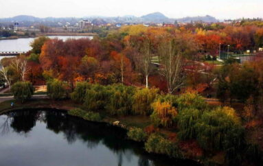 Осень на Кальмиусе: вид сверху